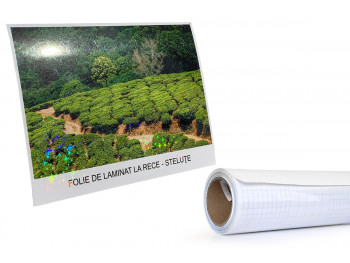 Folie laminat - 635 mm x 5...