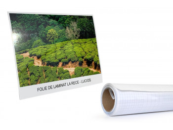 Folie laminat - 635 mm x 4...