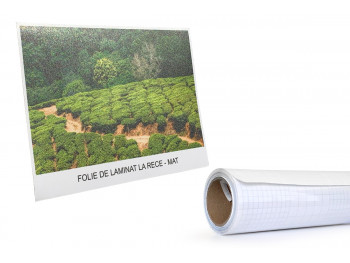 Folie laminat - 635 mm x 20...